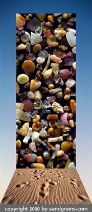 beach-1d-web-copy